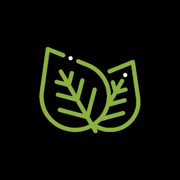 Futurn-Icons_Groen-groen.png